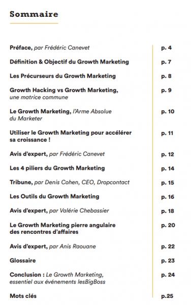 Les clés du Growth Marketing - Livre Blanc Les big Boss 10